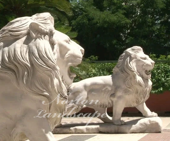 roaring lion marble statue